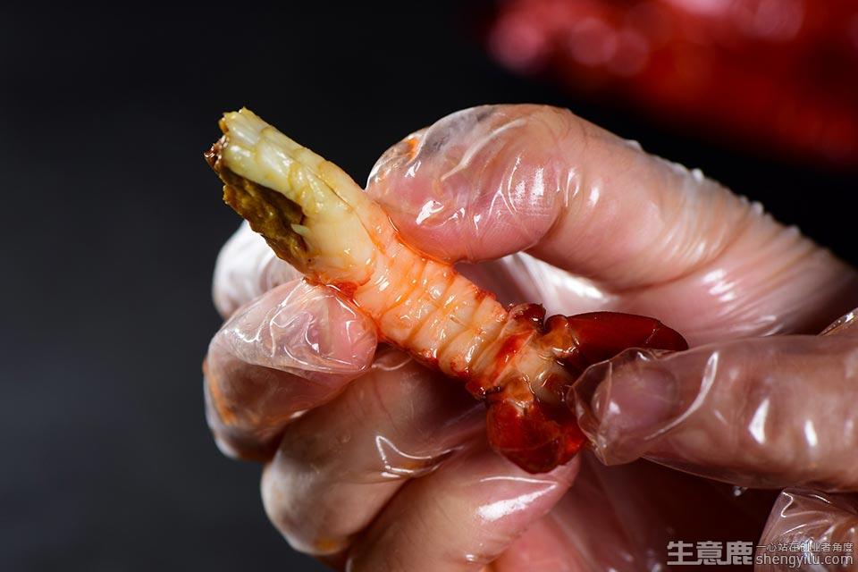 媚虾族小龙虾项目实拍大图