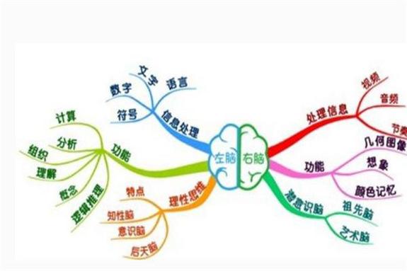 全脑教育的作用