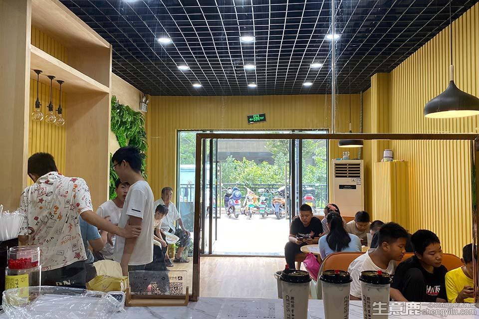 海棠猫奶茶加盟店实拍