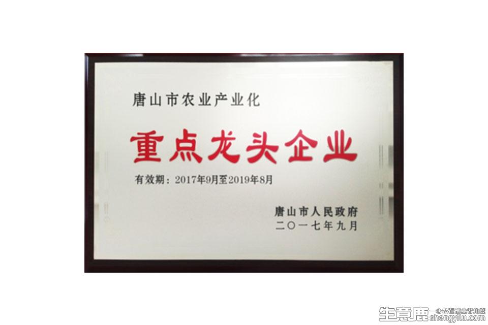 老八饺子企业实拍