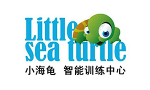 小海龟感统训练